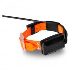 Collar DogTrace X30 Adicional
