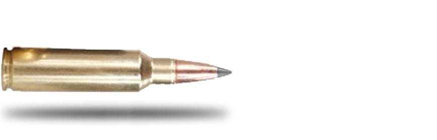 Munición Calibre .300WSM - Armería Online